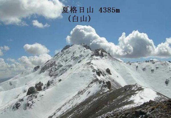 白山神駈道の風露草(かみかけみ...