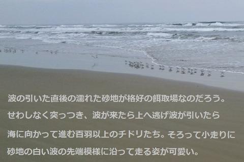 ⑨ (2)