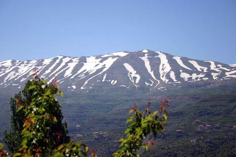 ⑤レバノン山脈a58
