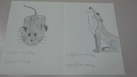 Yushin conparere poster