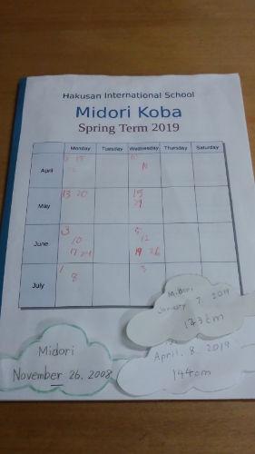 midori's portfolio