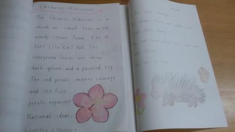 shiori book 2