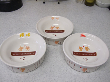 ペティオ 猫専用陶器食器(ドライフード向)箱なし