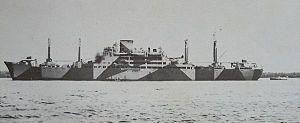 1/700 日本海軍 特設巡洋艦 愛国丸 1943