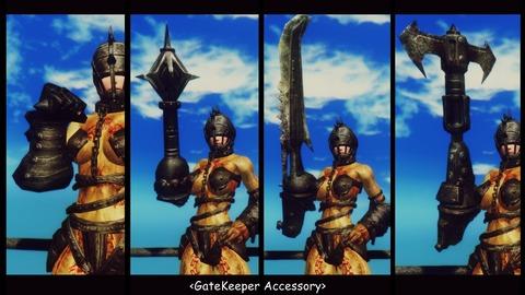005 GateKeeper accessory