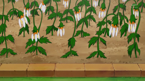 魔法つかいプリキュア第28話-094