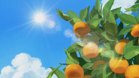 魔法つかいプリキュア第37話-133
