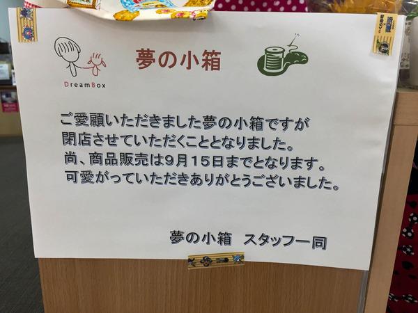 hatsuoi (15)