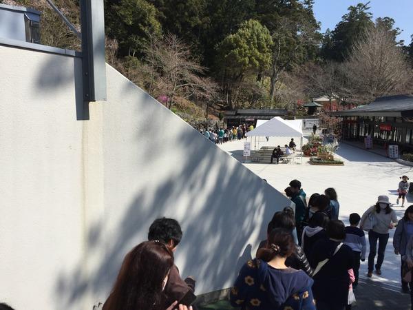sakura_dango_get (15)