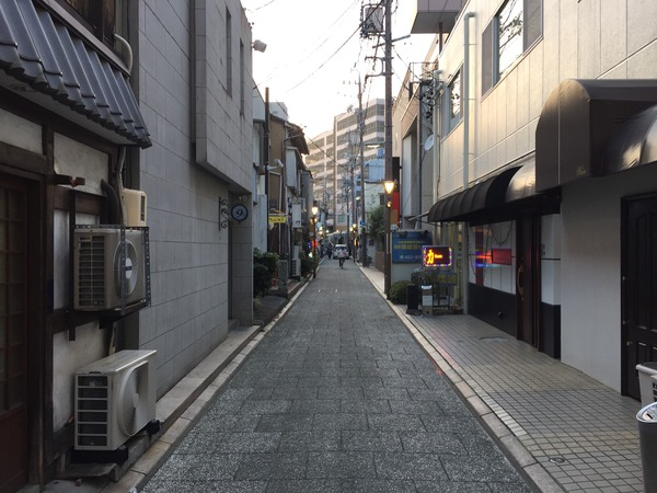 hamamatsu_bal (15)