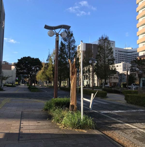 typ24_higai (3)