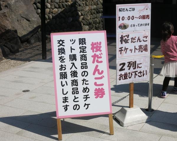 sakura_dango_get (19)