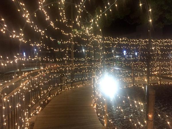 iwata_light (8)
