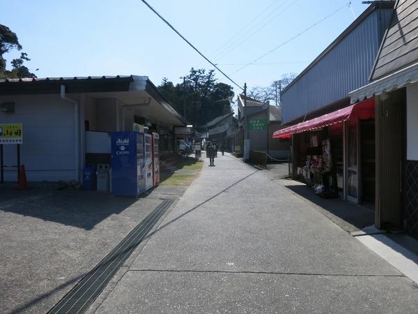 sakura_dango_get (8)
