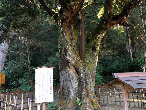 20170109okunijinja_yakubarai18