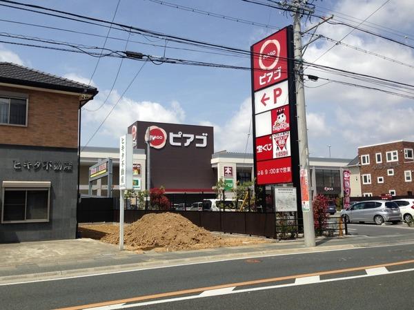 shimauma (3)