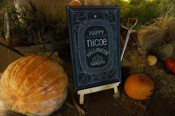nicoe_halloween (5)