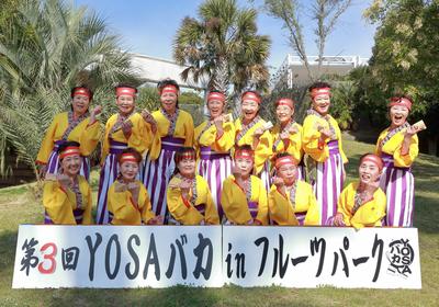 team_005浜西よさこい踊り隊