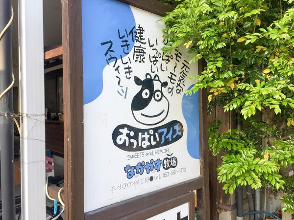 nakayasu_out