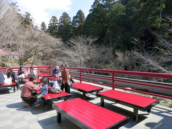 hattasan_sakura_fango (5)