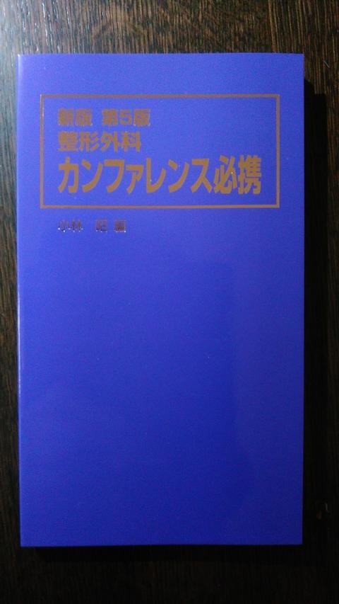 KIMG1139 - コピー