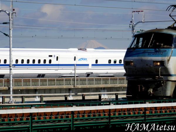 DSC02805
