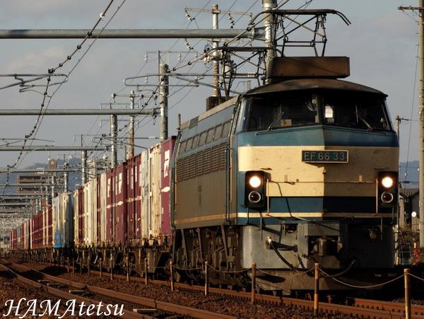 DSC07271