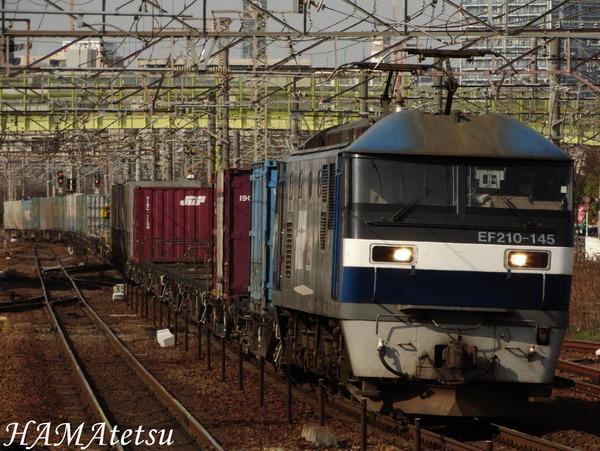 DSC07683