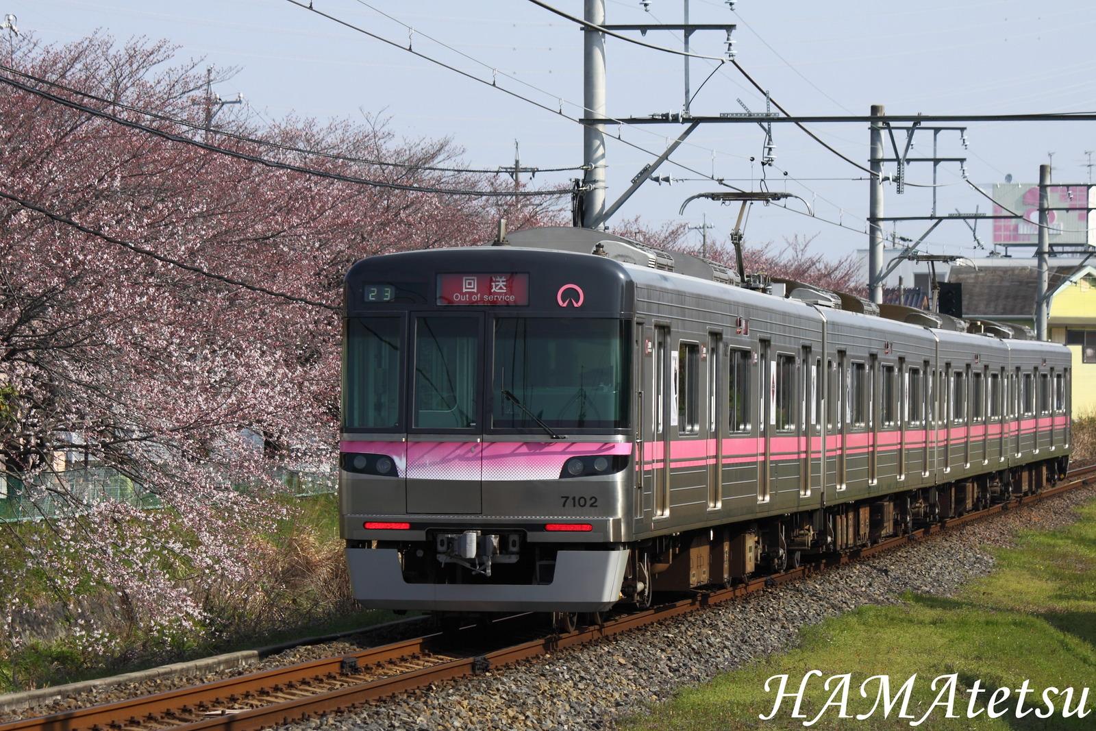 DPP_6609