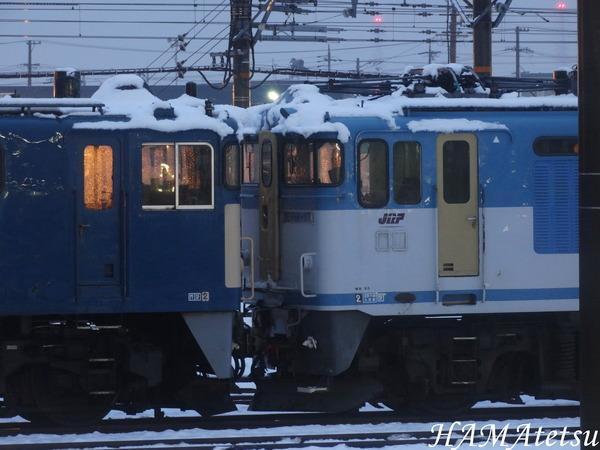 DSC06919