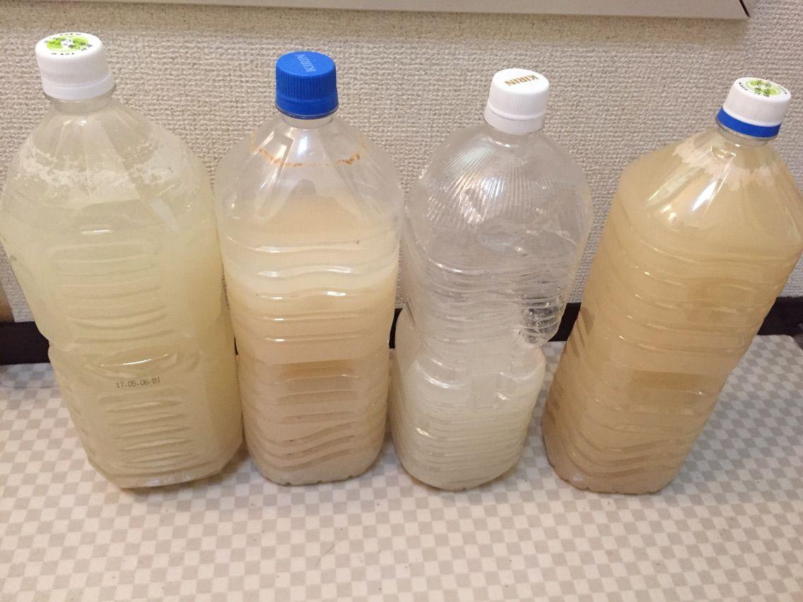 乳酸菌 とぎ汁 米 の