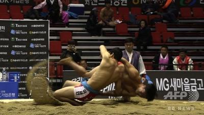 【韓国紙】朝鮮半島固有の相撲「シルム」の進むべき道として、日本の相撲人気復活に学べ