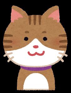 cat1_smile (3)