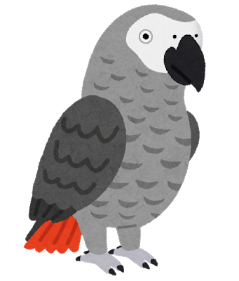 bird_youmu