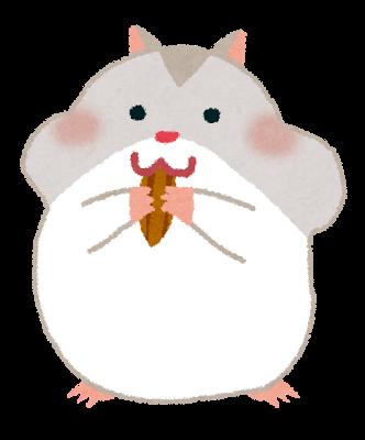 hamster_perl_white