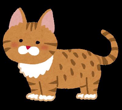 cat_munchkin