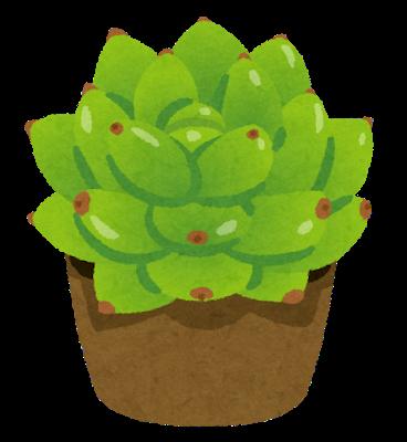 plant_taniku_harumoe