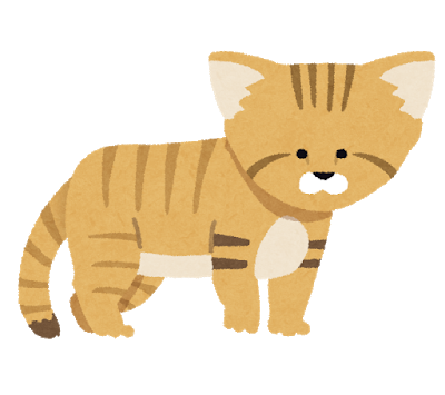cat_sunaneko