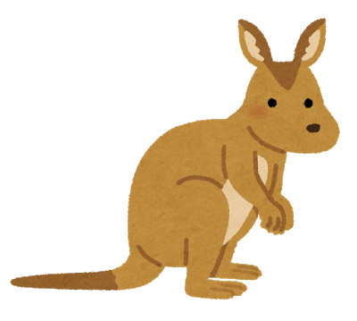 animal_wallaby_kangaroo