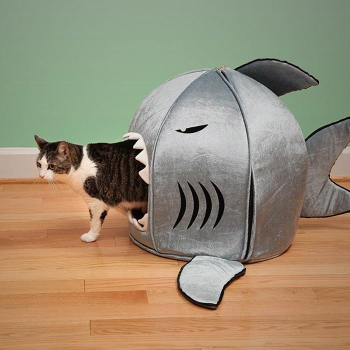 cat007