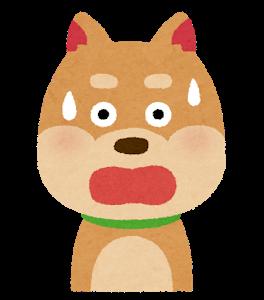 dog2_2_surprise