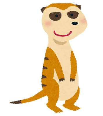 animal_meerkat