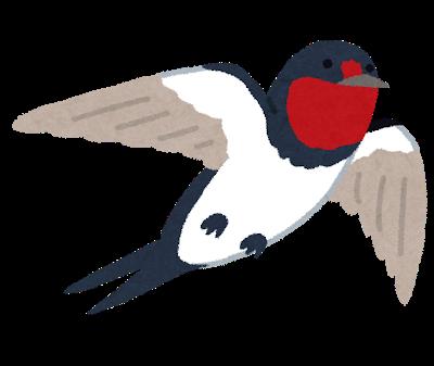 bird_tsubame