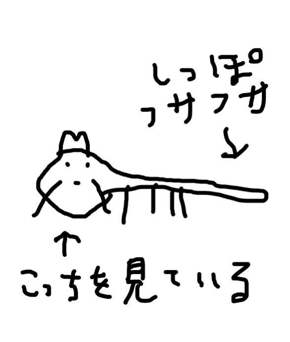 tanu2