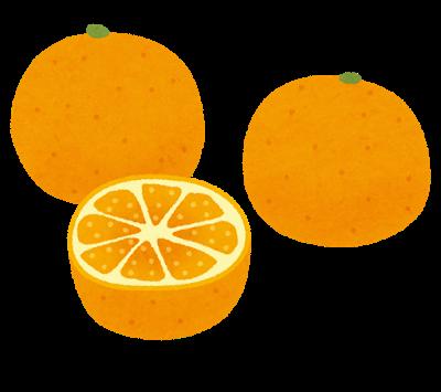 fruit_mikan_set