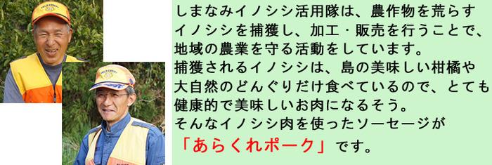 inoshishi_dtl