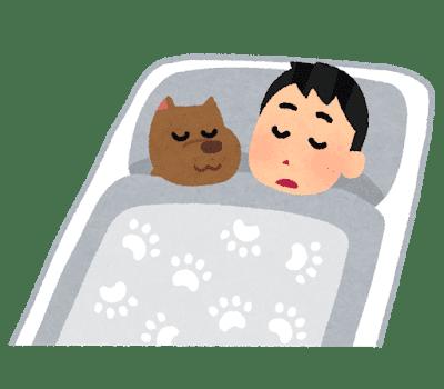 pet_inu_sleep (1)
