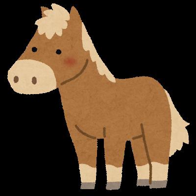 animal_pony