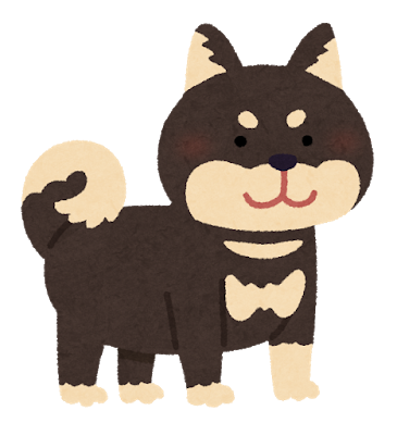 dog_shibainu_black