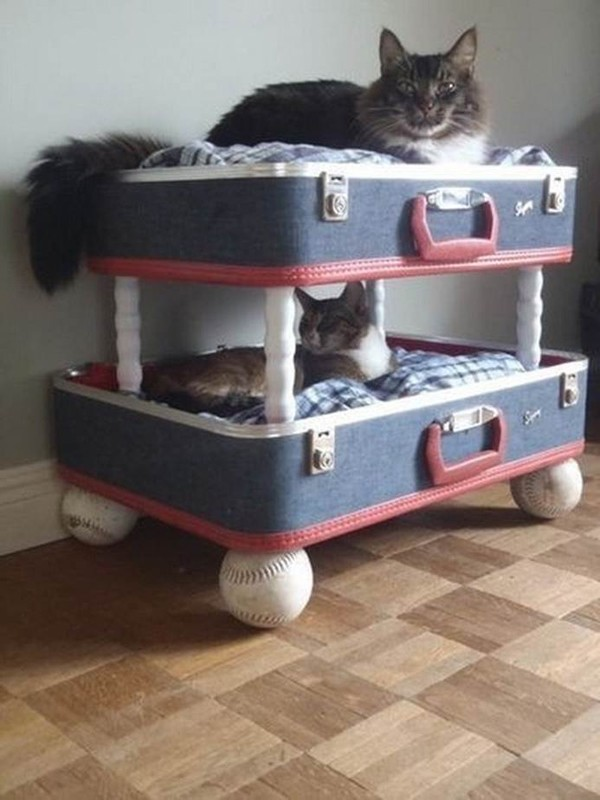 cat030